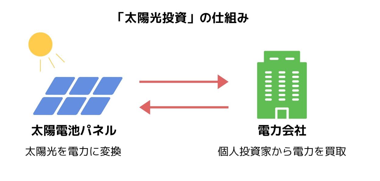 basicknowledge_taiyoukoutoushi_shikuimi